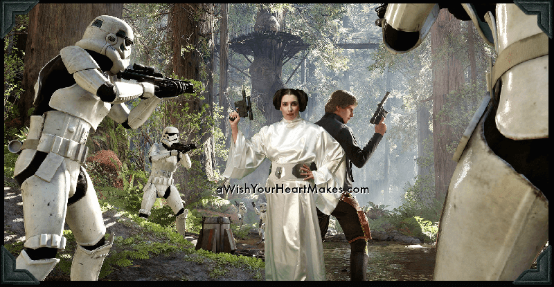Princess Leia, Star Wars parties, Central Coast and Central Valley, California