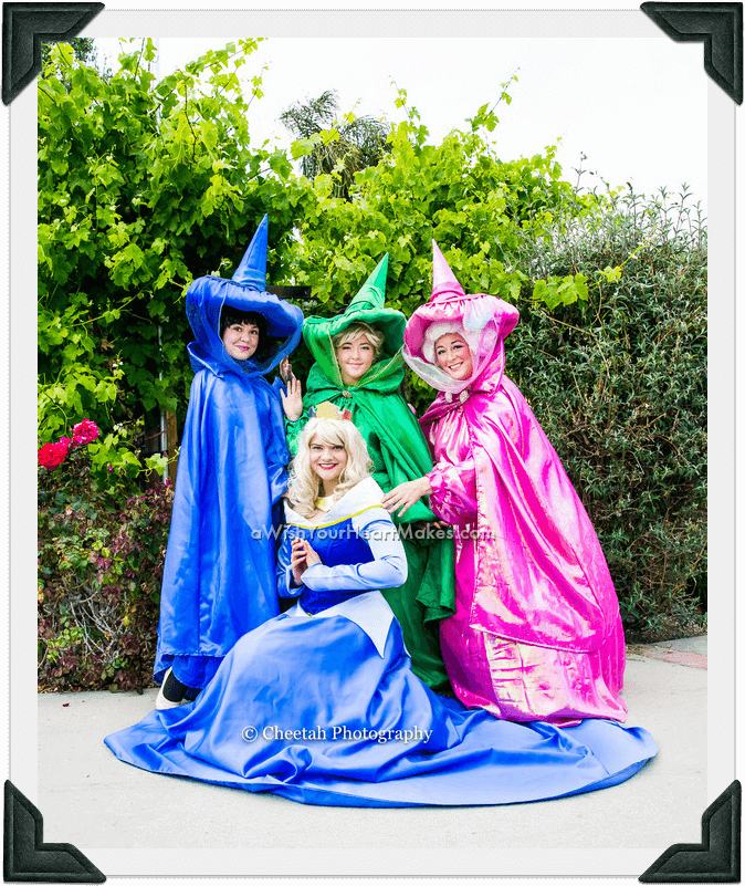 Sleeping Beauty, princess parties, Central Coast and Central Valley, California