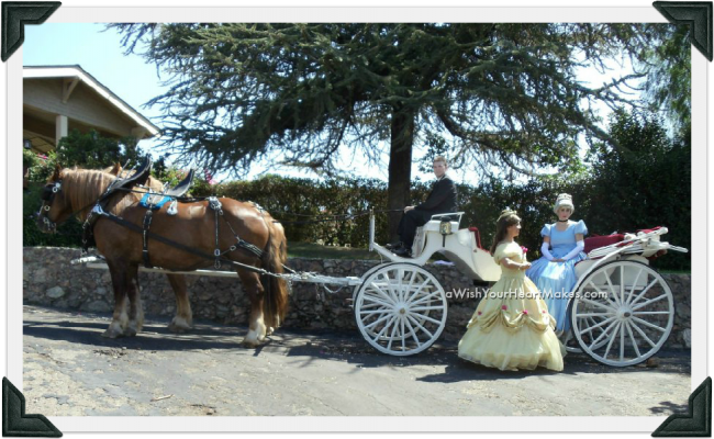 Princess Carriage, aWishYourHeartMakes.com, Fairytale parties, Central Valley and Central Coast, California