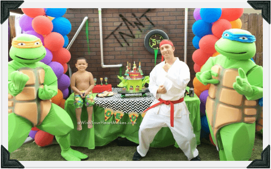 Teenage Mutant Ninja Turtle Parties, Central Valley & Central Coast, California